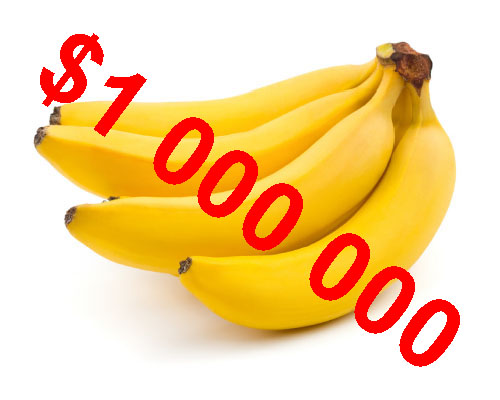 Banán za Milion aneb Průvodce BUDOVÁNÍ VAŠÍ OSOBNÍ ZNAČKY