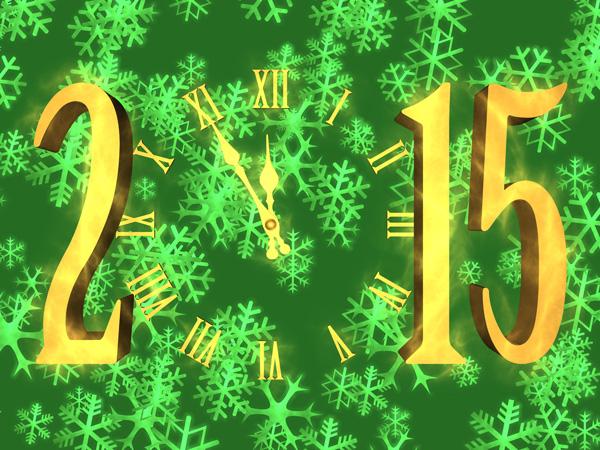 Novoročenka 2015 - vločky