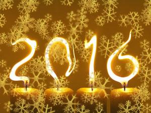 Novoročenka 2016 - vločky