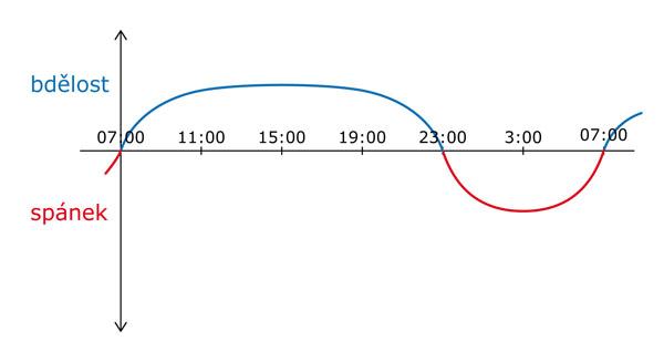Denní cyklus a ranní vstávání