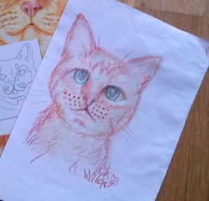 kVítek nakreslil kočku