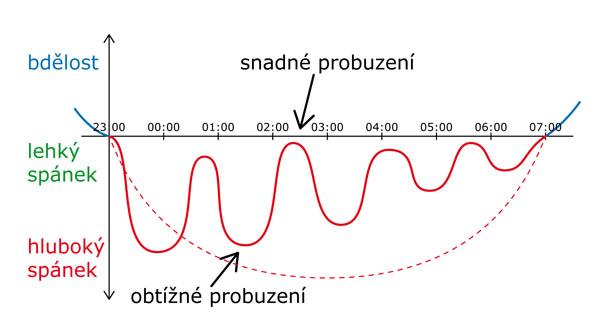 Spánkový cyklus a ranní vstávání