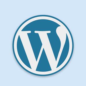 WordPress - logo 300
